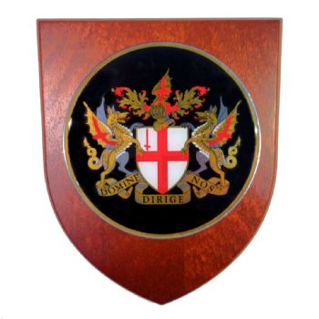 Presentation shield with large round shaped centrepiece.